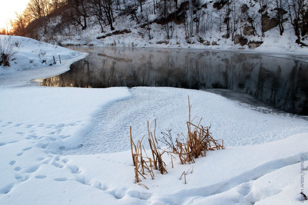 trostnik-on-ice-c
